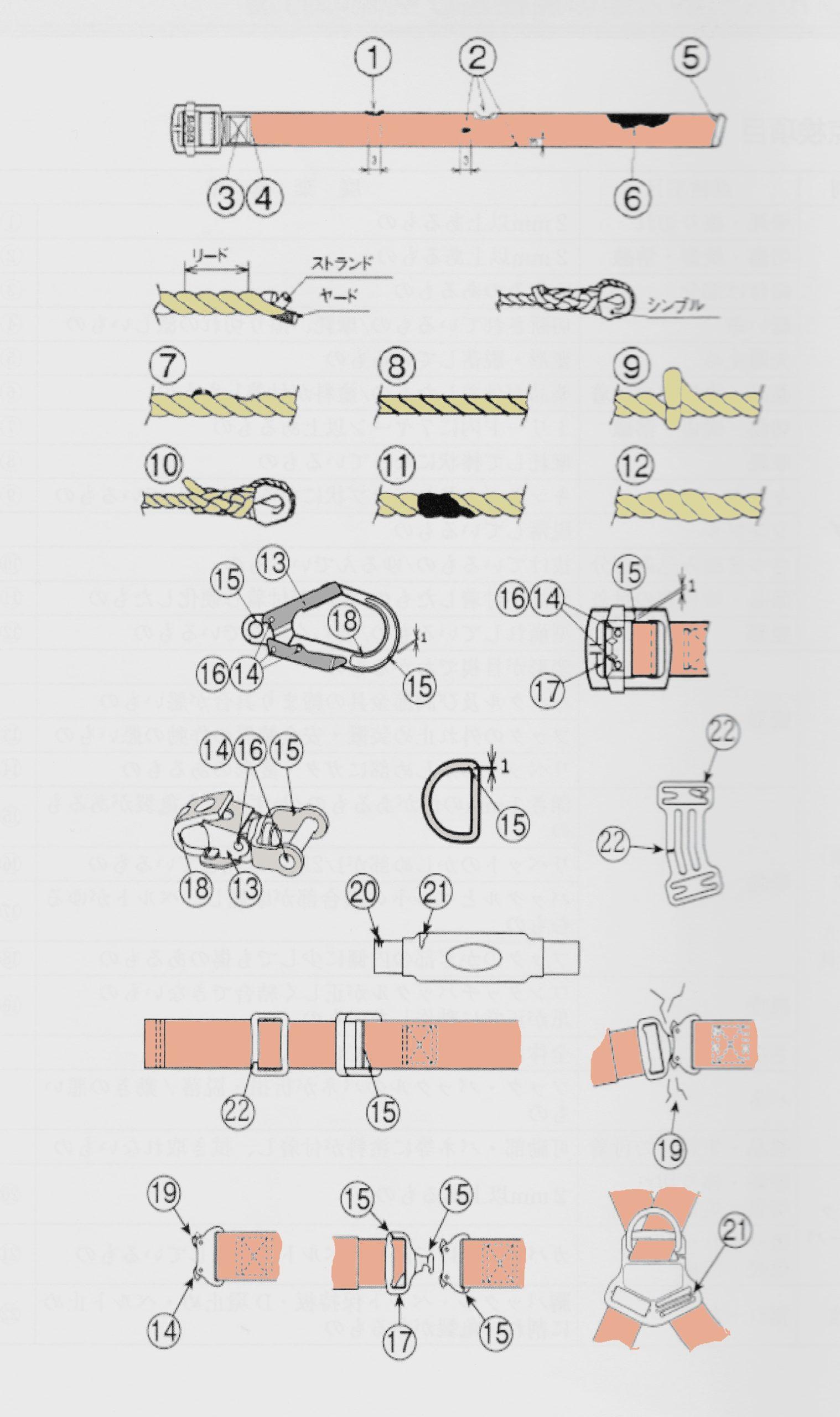 安全帯、フルハーネスの限度図